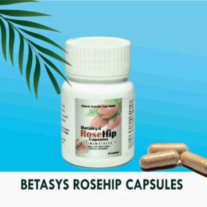 RoseHip Capsules